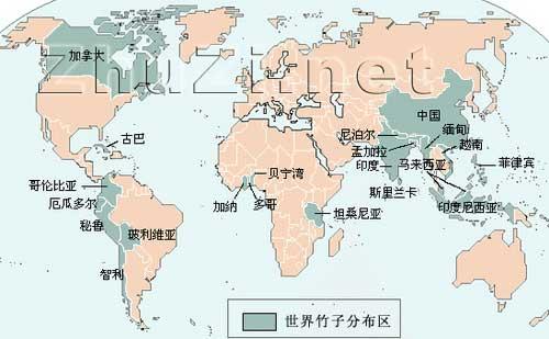 东南亚季风带区域(中国东南,西南部,中南半岛及印度次大陆)是世界竹子