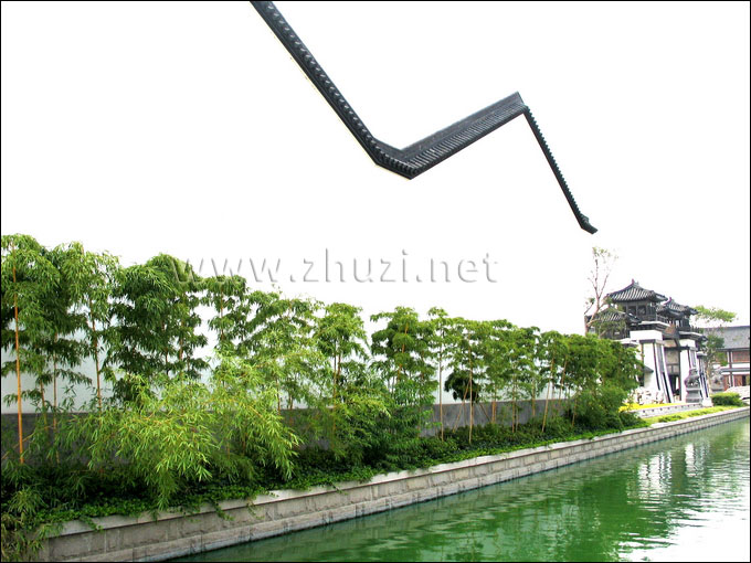观赏竹应用于风景区园林造景